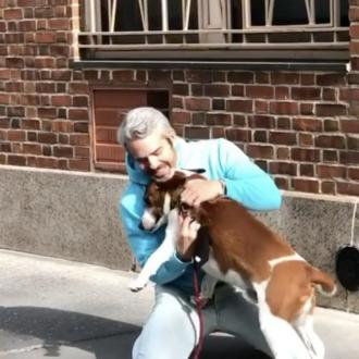 'Keeping him here could be catastrophic': Andy Cohen rehomes his dog