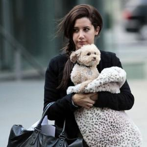 Ashley Tisdale Splits From Boyfriend