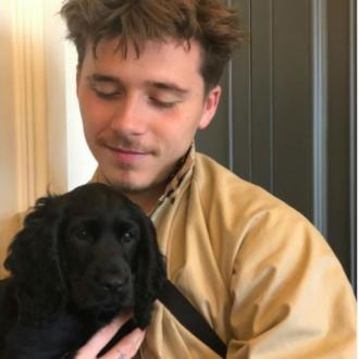 Brooklyn Beckham's new dog