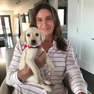 Caitlyn Jenner adopts puppy