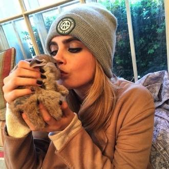 Cara Delevingne Wants V Festival Vip Area For Rabbit