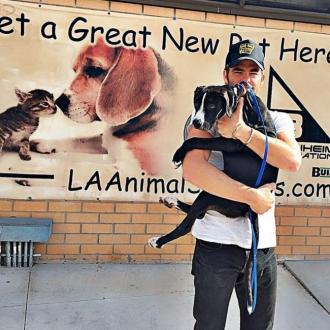 Chris Pine adopts dog from shelter
