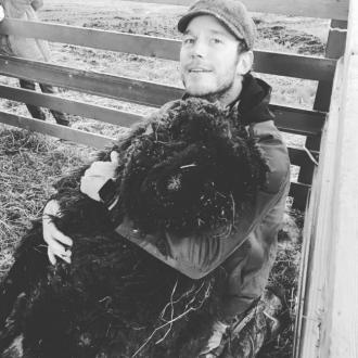 'A solemn day at Stillwater Ranch': Chris Pratt's ram passes away
