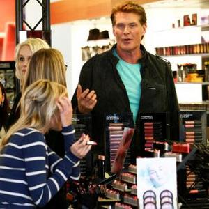 David Hasselhoff To Buy Castle