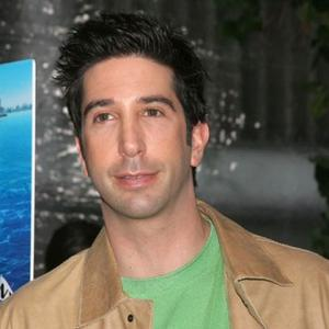 David Schwimmer To Be A Dad