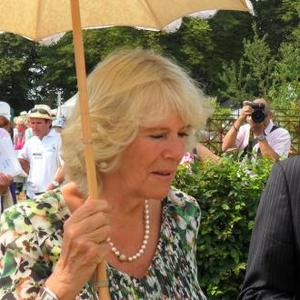 Tireless Charity Worker Duchess Camilla