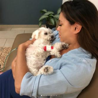 Eva Longoria's pet pooch has died