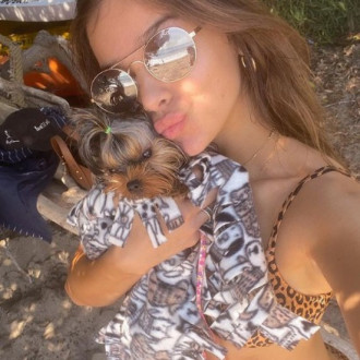 Hailee Steinfeld carries her pet pooch Martini in her designer handbag