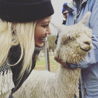 Hilary Duff adopts baby Alpaca