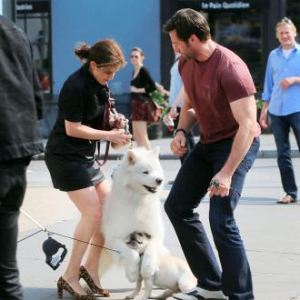 Hugh Jackman's Dog In Pooch Pile-up