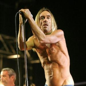 Iggy Pop Writing New Tracks