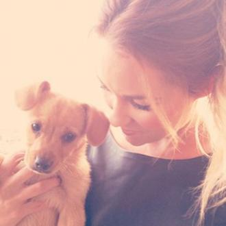 Lauren Conrad Adopts Puppy