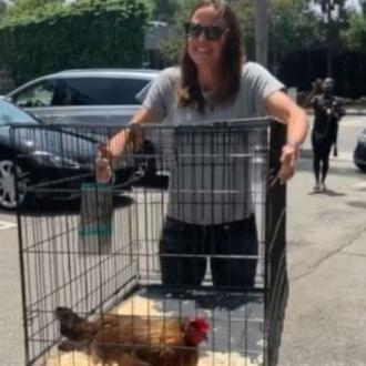 Jennifer Garner's chicken has died