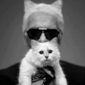 Karl Lagerfeld's Cat Gives First Ever Interview