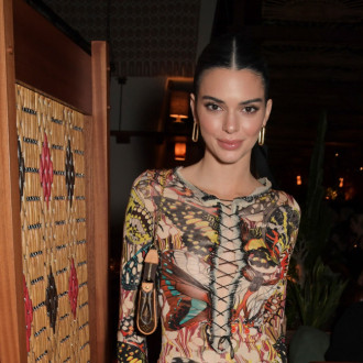 Kendall Jenner hailed as 'biggest fashion icon there is right now'