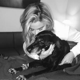 Khloe Kardashian's dog dies