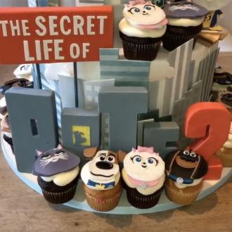 Kim Kardashian West hosts Secret Life of Pets 2 screening at home