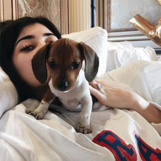 Kylie Jenner On 'Mom Duty' With New Puppy