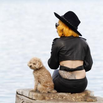 Lady Gaga Teaches Dog To Draw