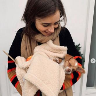 Lily Collins and Charlie McDowell adopt rescue dog