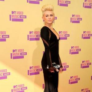 Miley Cyrus' 'Stalker' Arrested
