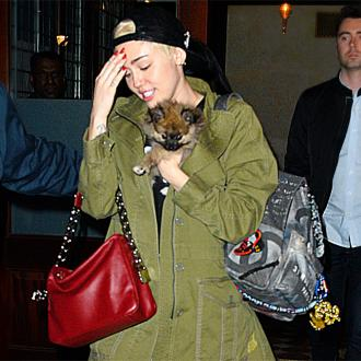 Miley Cyrus Gives Away Dog