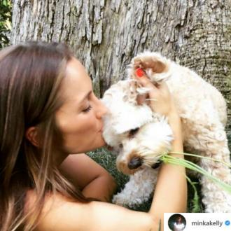 Minka Kelly's dog dies