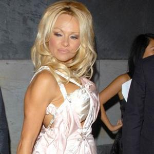 Pamela Anderson's Taxing Responsibility