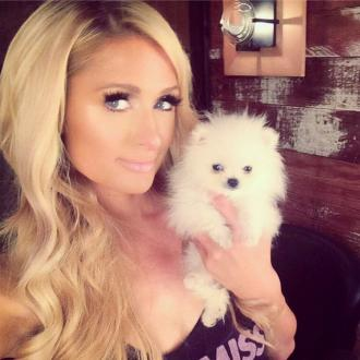 Paris Hilton Names Dog Prince Hilton