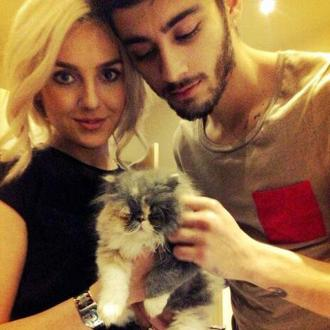 Perrie Edwards And Zayn Malik Adopt Kitten