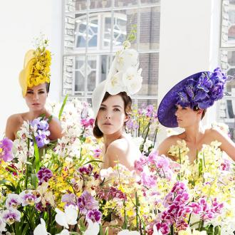 Philip Treacy unveils Orchid hat collection