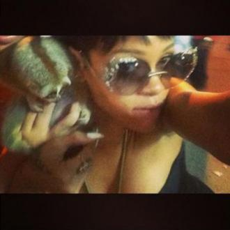 Rihanna's Slow Loris Pic Leads To Thai Arrests