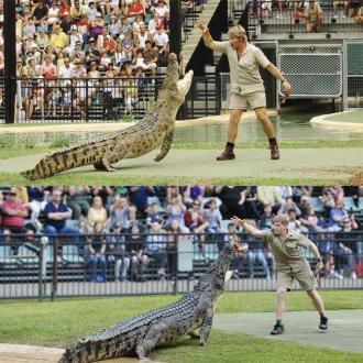 Steve Irwin's Son Robert Is His Lookalike In Crocodile Snap