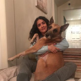 Salma Hayek's dog dies
