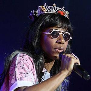Santigold Learned Transcendental Meditation For Album