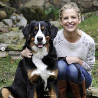 Sarah Michelle Gellar's pooch has passed away