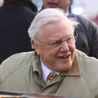 David Attenborough called Bjork 'honey'