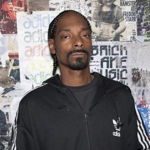 Snoop Dogg 'Arrested For Cannabis Possession'