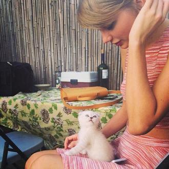 Taylor Swift Has A New Kitten