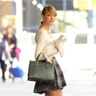Taylor Swift's Cat Is A Diva