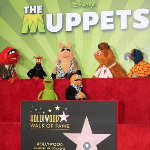 The Muppets Get Star On Hollywood Walk Of Fame