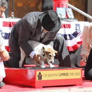 Uggie Plants Paw Prints In Hollywood