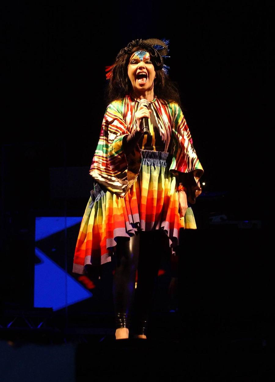 Bjork Wants Governments To Ban Cars