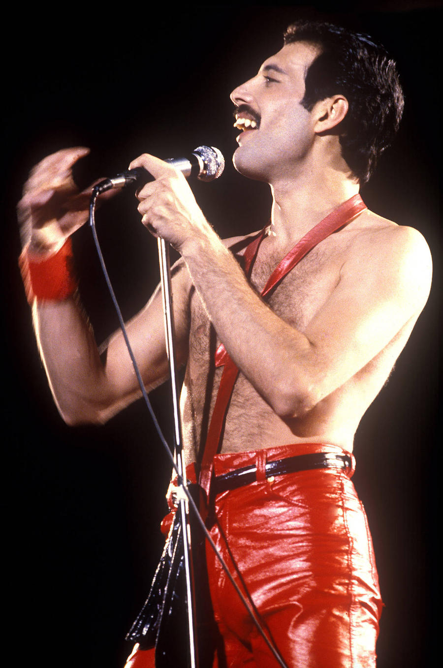 Rock Star Freddie Mercury Has Asteroid Named After Him