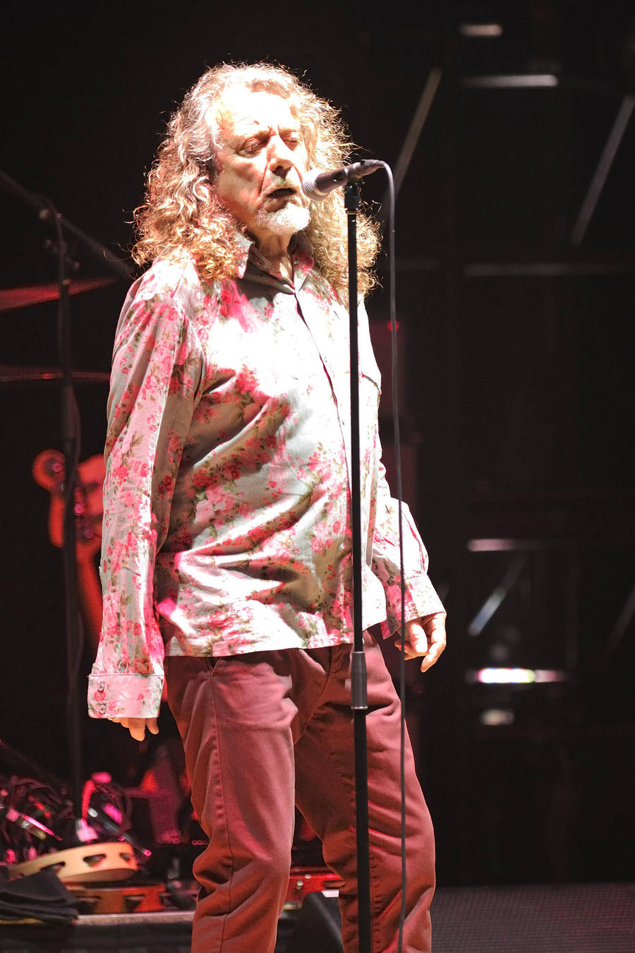 Robert Plant Pulls Out Of Festival Due To Led Zeppelin Plagiarism Trial