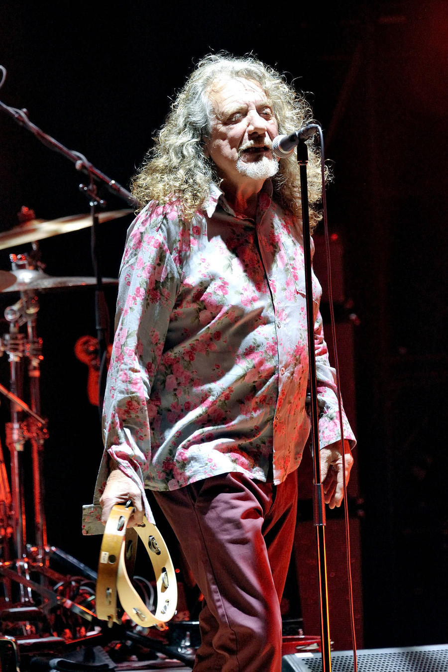 Robert Plant: 'I Have No Recollection Of Seeing Band We're Accused Of Ripping Off Live'