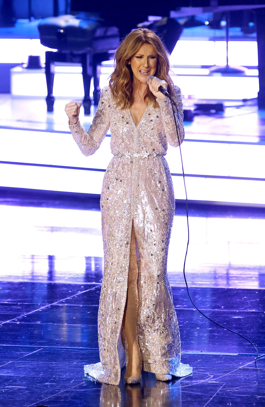 Celine Dion Knocks $30 Million Off Florida Estate