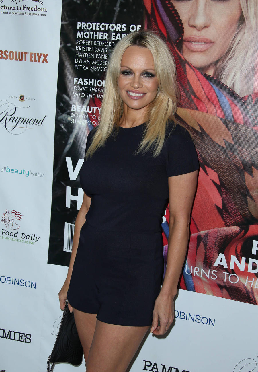 Pamela Anderson Turns Down Baywatch Return