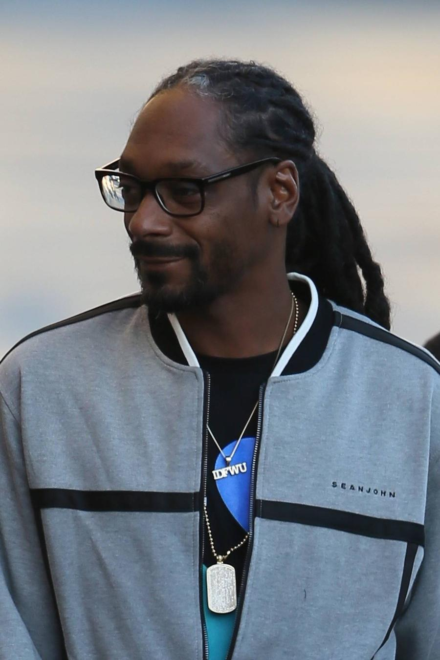 Snoop Dogg Falls Victim To Thieves - Report