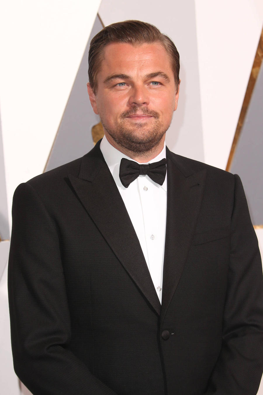 Leonardo Dicaprio And Spotlight Strike Gold At 2016 Oscars